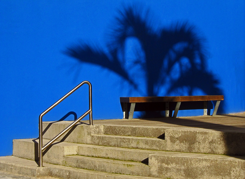 Grand Canal Dock, seating area, Palm tree, reflection, blue wall