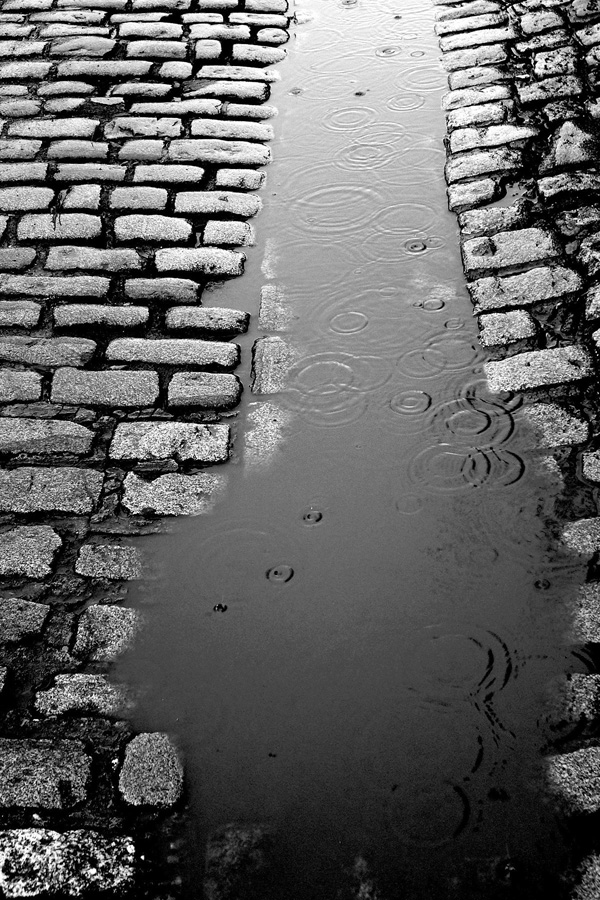 Ireland, Dublin, Temple Bar, Cobblestones, Rain, black and white photography