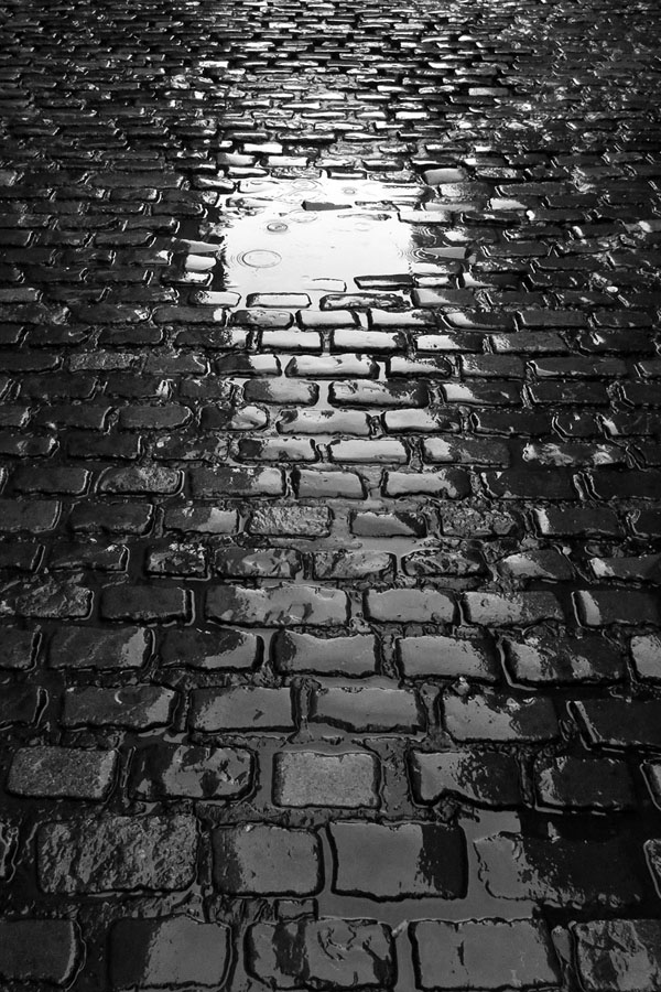 Ireland, Dublin, Temple Bar, Cobblestones, Rain
